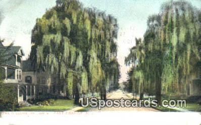 Willows, William Street - East Orange, New Jersey NJ Postcard