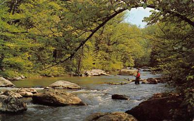 A Fisherman's Paradise Raritan River, New Jersey Postcard