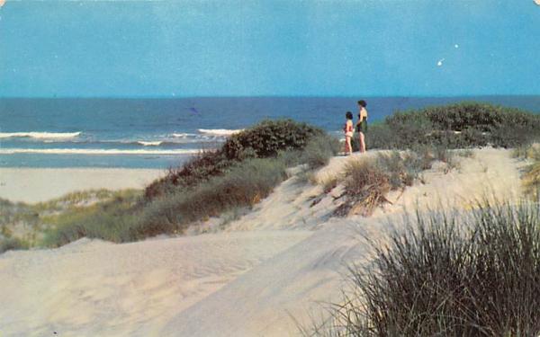 San Dunes and Ocean Stone Harbor, New Jersey Postcard
