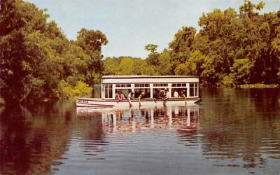 Largest flowing springs in the world Silver Springs, New Jersey Postcard