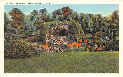 A Well in Duke's Park Somerville, New Jersey Postcard