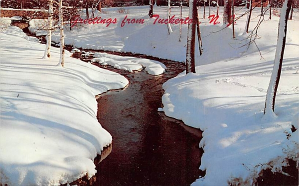 A Babbling Brook in Winter Wonderland Tuckerton, New Jersey Postcard
