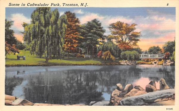 Scene in Cadwalader Park Trenton, New Jersey Postcard