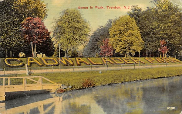 Scene in Park, Cadwalader Park Trenton, New Jersey Postcard