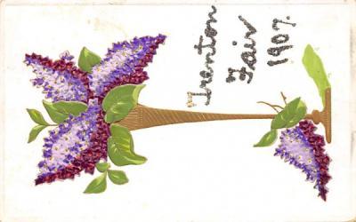 Trenton Fair 1907 New Jersey Postcard