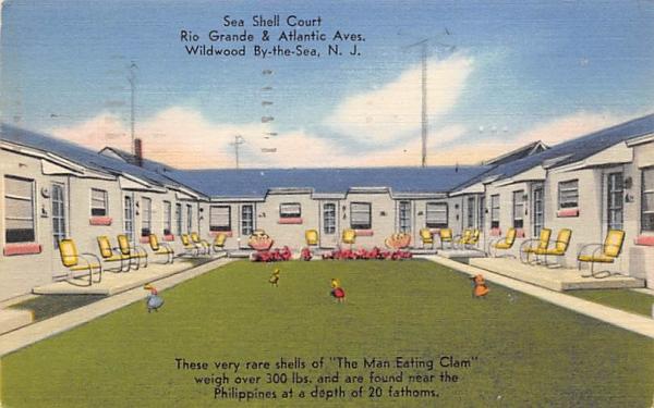 Sea Shell Court Wildwood, New Jersey Postcard