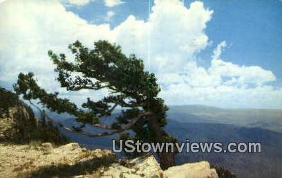 Sandia Mountain Crest - Albuquerque, New Mexico NM Postcard