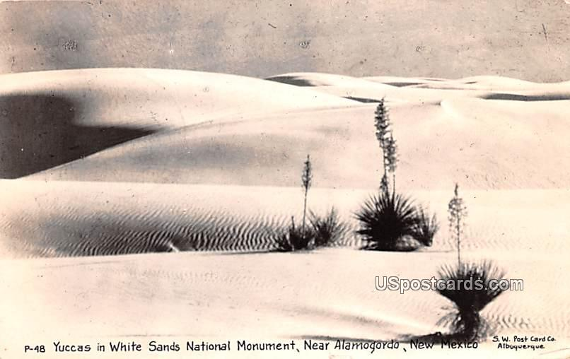 Yuccas in White Sands National Monument - Alamogordo, New Mexico NM Postcard