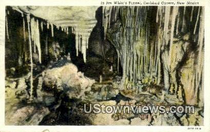 Jim White's Tunnel - Carlsbad Caverns, New Mexico NM Postcard