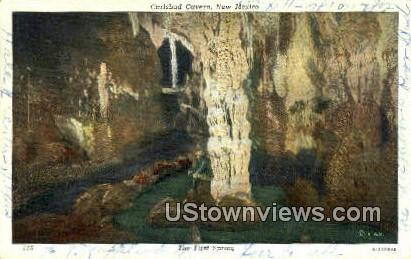 First Spring - Carlsbad Caverns, New Mexico NM Postcard