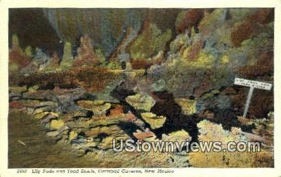 Lily Pads, Toad Stools - Carlsbad Caverns, New Mexico NM Postcard