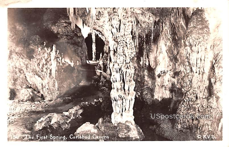 The First Spring - Carlsbad Caverns, New Mexico NM Postcard
