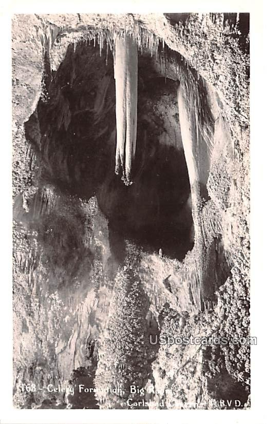 Celery Formation - Carlsbad Caverns, New Mexico NM Postcard