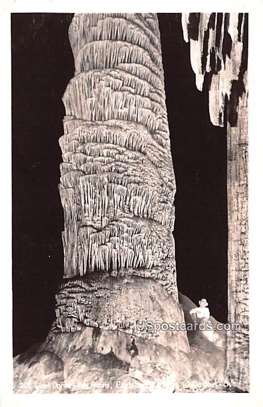 Giant Dome - Carlsbad Caverns, New Mexico NM Postcard