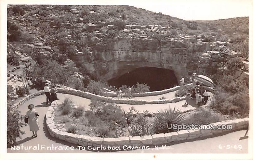 Natural Entrance - Carlsbad Caverns, New Mexico NM Postcard