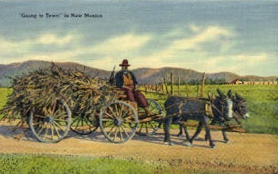 Going to Town - Misc, New Mexico NM Postcard