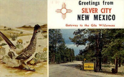 Gateway to the Gila Wilderness - Silver City, New Mexico NM Postcard