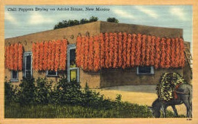 Chili Peppers Drying - Misc, New Mexico NM Postcard