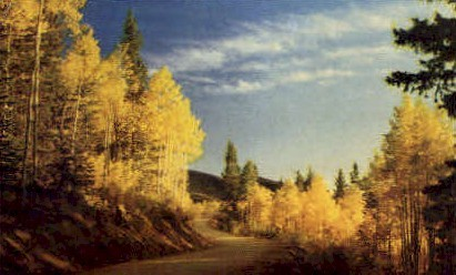 Aspens at Sundown - Misc, New Mexico NM Postcard