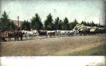 Wool Train  - Misc, New Mexico NM Postcard