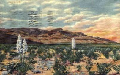 Sacramento Mtns - Alamogordo, New Mexico NM Postcard