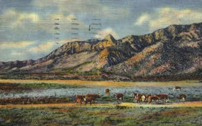 Sandia Peak & Needle  - Albuquerque, New Mexico NM Postcard