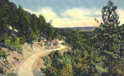Sandia Loop Road - Albuquerque, New Mexico NM Postcard