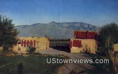 Chili Time - Misc, New Mexico NM Postcard