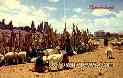 Navajo Sheep Herd - Misc, New Mexico NM Postcard