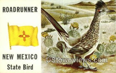Road Runner - Misc, New Mexico NM Postcard