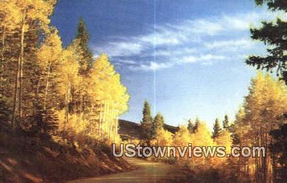 Aspens - Misc, New Mexico NM Postcard