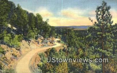 Misc, NM     ;     Misc, New Mexico Postcard