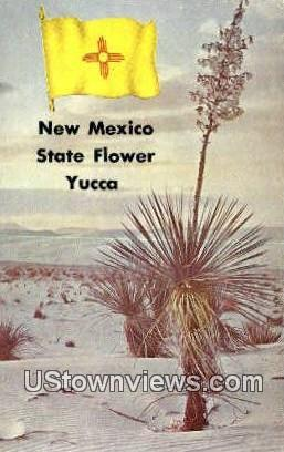 Yucca - Misc, New Mexico NM Postcard