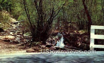 Cimarron Canyon - Raton, New Mexico NM Postcard