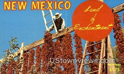 Chile - Misc, New Mexico NM Postcard