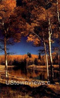 Fall Silence - Misc, New Mexico NM Postcard