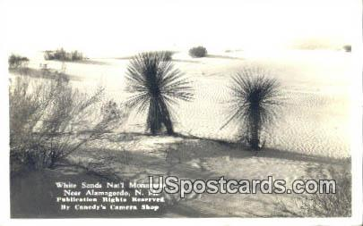 White Sands National Monument - Alamogordo, New Mexico NM Postcard
