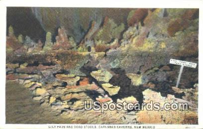 Lily Pads, Big Room - Carlsbad Caverns, New Mexico NM Postcard