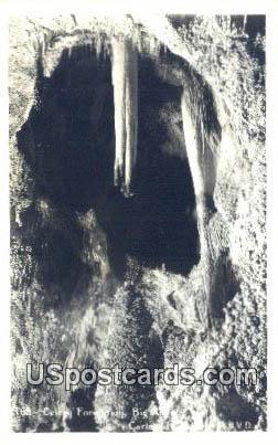Celery Formation, Big Room - Carlsbad Caverns, New Mexico NM Postcard