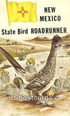 State Bird, Roadrunner - Misc, New Mexico NM Postcard