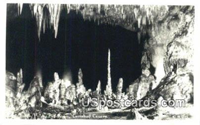 Totem Poles - Carlsbad Caverns, New Mexico NM Postcard