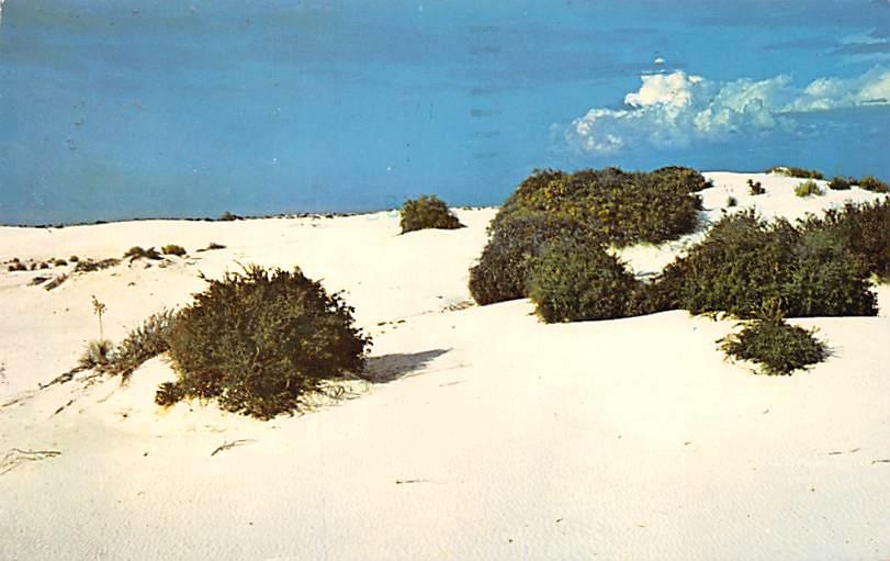 White Sand National Park NM
