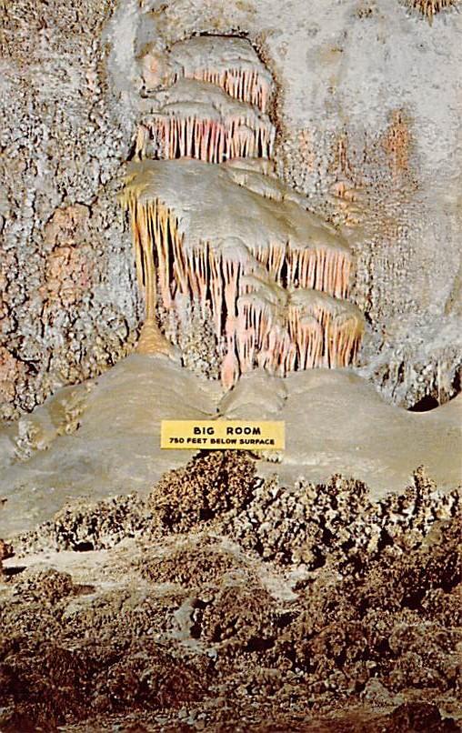 Carlsvad Caverns National Park NM