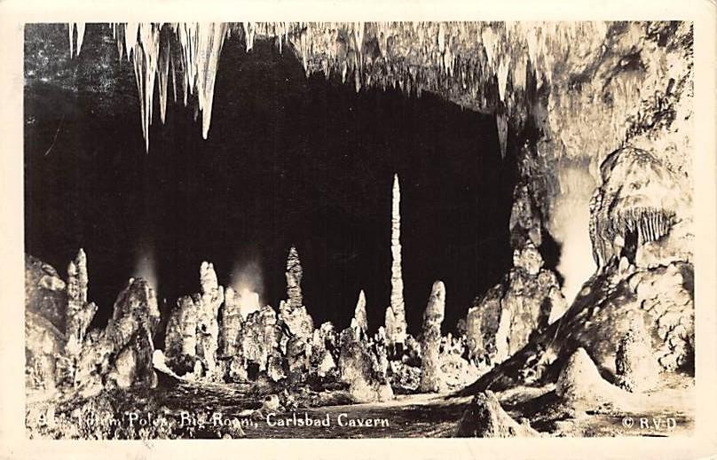 Carlsbad Cavern NM