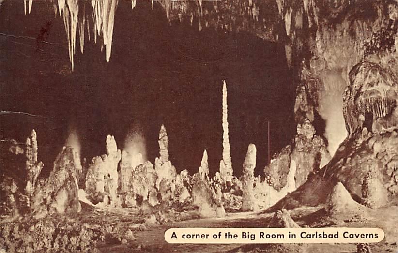 Carslbad Caverns National Park NM