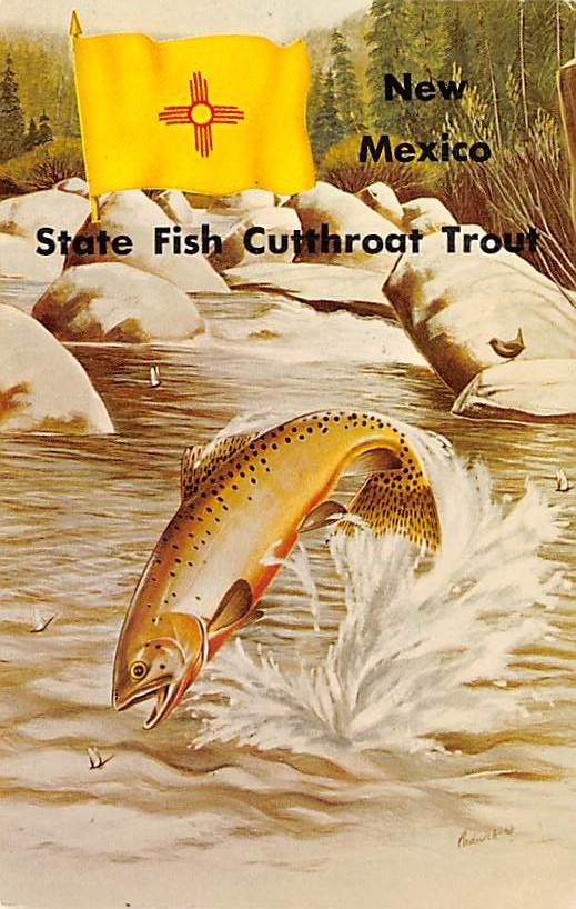State Fish NM
