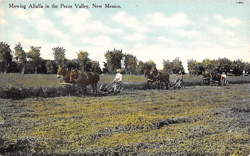 Pecos Valley NM