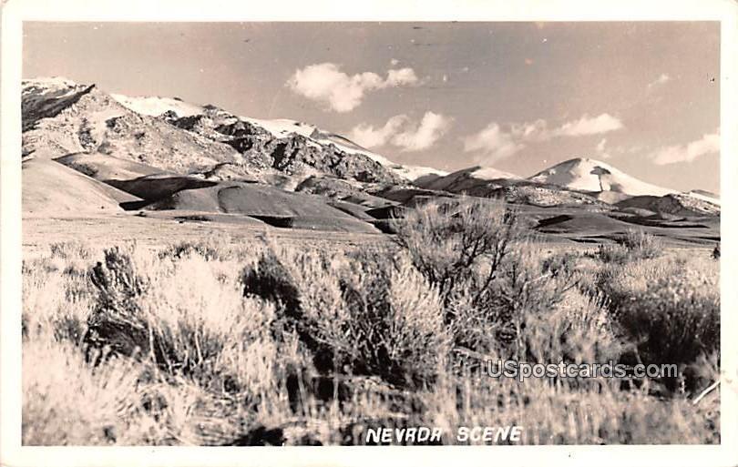 Nevada Scene - Lovelock Postcard