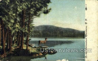 Adirondack Mts, New York, NY Postcard