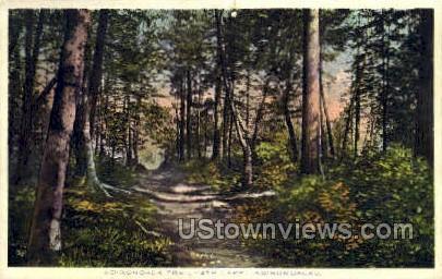 Adirondack Trail - Adirondacks, New York NY Postcard